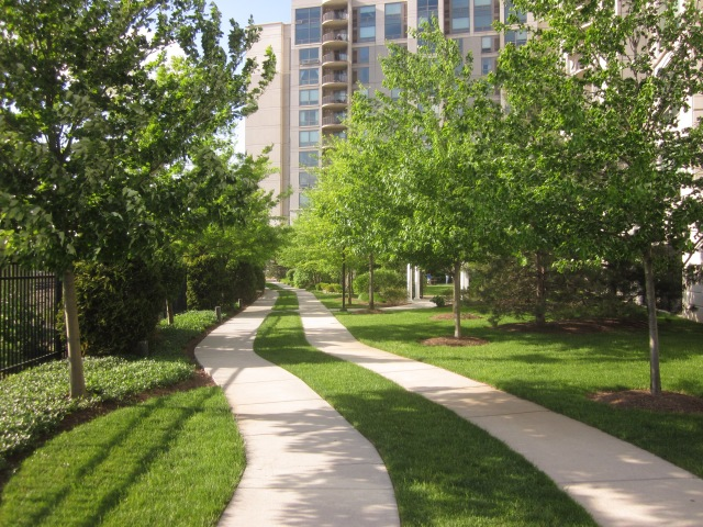 Courtyard along the railroad tracks, on the west side of the highrise